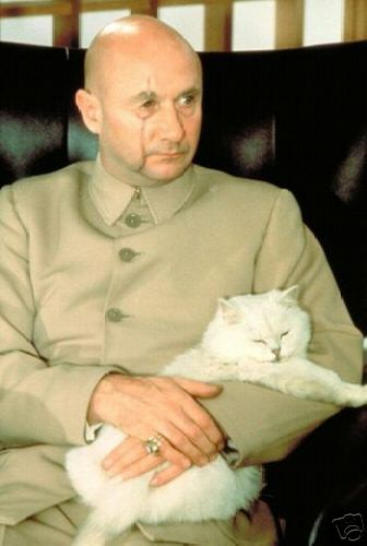 Blofeld spectre ring  SPECTRE is the organization created by Blofeld, Bond's archienemy.