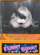funny bunny heter jag