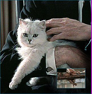 http://www.007museum.com/blofeld_cat_frwl.jpg